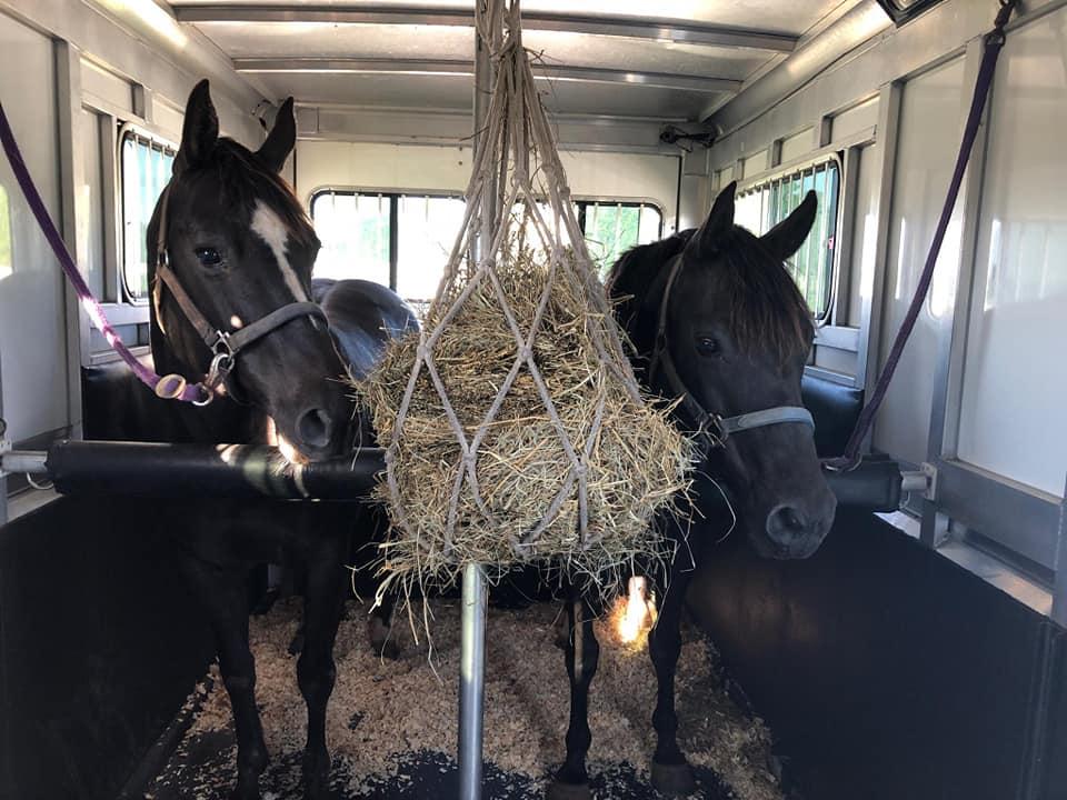horse-haulers-1.jpg